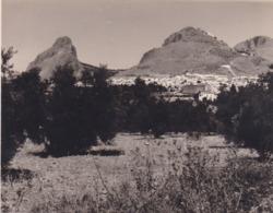 Route De RONDA A GRAZALEMA 1962 Photo Amateur Format Environ 7,5 Cm X 3,5 Cm - Lugares