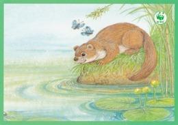 Postal Stationery - Beaver - Castor - Bever - Biber - Pro Natura - WWF Panda Logo - Suomi Finland - Postage Paid - RARE - Dieren