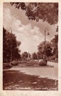 IASI : GRADINA COPOU / JARDIN PUBLIC - ANNÉE / YEAR ~ 1945 - '950 (ac911) - Roumanie