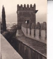 GRENADA GRANADA Torre De Los PICOS 1955 Photo Amateur Format Environ 7,5 Cm X 3,5 Cm - Lugares