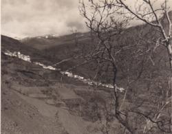 ALPUJARRA TREVELEZ 1954 Photo Amateur Format Environ 7,5 Cm X 3,5 Cm Plus Haut Village D'Espagne - Lugares