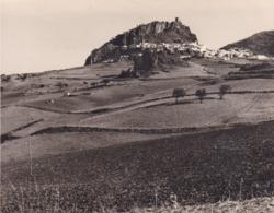 ZAHARA 1962 Photo Amateur Format Environ 7,5 Cm X 3,5 Cm - Lugares