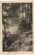 Forêt De Soignes - Etang De La Patte D'Oie - Auderghem - Oudergem