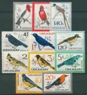 1962 Uruguay Fauna Aves Pajaros 11v. Serie Completa Nuevos - Sperlingsvögel & Singvögel