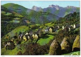 """Carte Postale 64. Aydius  Le """"Plat à Barbe"""" Et Le Pic D'Anie  Trés Beau Plan - France"""