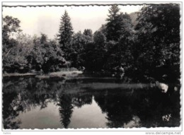 Carte Postale 64. Saint-Christau  Le Lac Trés Beau Plan - France