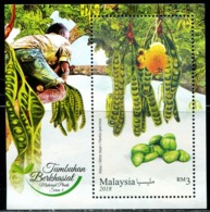 XC0809 Malaysia 2018 Medicinal Plant Beans M MNH - Medicinal Plants