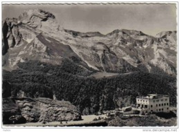 Carte Postale 64.  Gourette Et L'Hotel Des Crêtes-Elanches Le Massif Du Ger Trés Beau Plan - France