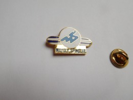 Beau Pin's En EGF , Médical  , Laboratoire Mayoly Spindler , Pharmacie , Chatou , Signé Logo Motiv - Médical