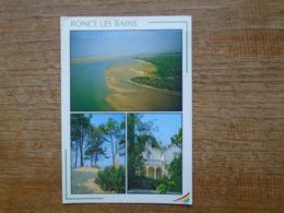 Ronce Les Bains , La Pointe Espagnole Et Le Pontde La Seudre , Yucca Sauvage , Villa - France