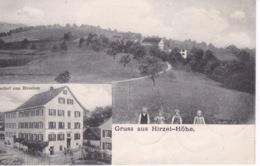 SUISSE(HIRZEL HOHE) GRUSS - ZH Zurich