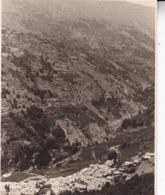 ALPUJARRA PAMPANEIRA 1935 Photo Amateur Format Environ 7,5 Cm X 3,5 Cm - Lugares