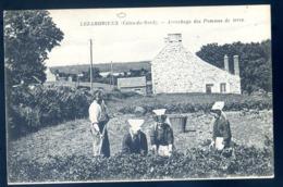 Cpa Du 22 Lézardrieux Arrachage Des Pommes De Terre  --  Environs Paimpol    LZ123 - Paimpol