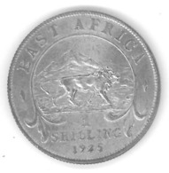 AFRIQUE DE L'EST - EAST AFRICA - 1 SHILLING 1925 ARGENT - George V - Silver - Britse Kolonie