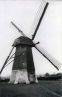 PAAL Bij Beringen (Limburg) - Molen/moulin - Maxikaart Van De Verdwenen Achtkante Houten Molen Huygens In 1945 - Beringen