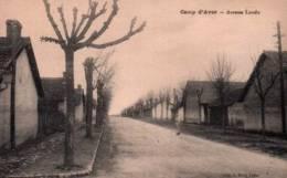 CPA - CAMP D'AVORD - AVENUE LANDU ... - Avord