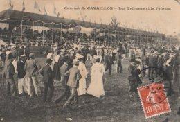 CPA 84 CAVAILLON COURSES TRIBUNES ET LA PELOUSE - Cavaillon