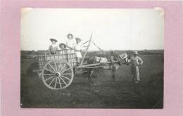 AGRICULTURE - Attelage Et Enfants (photo Vers 1900 Format  11cm X 7,7cm) - Métiers