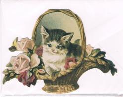 Chat- Cat -katze -gatto - Poesje In Mand- Carte Découpé - Katten
