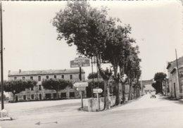 CPSM 84 CAUMONT PLACE  MARCHE AUX RAISINS DE TABLE   4 CV - Caumont Sur Durance