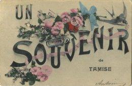 TEMSE - TAMISE  :  Un Souvenir   (  Geschreven Met Zegel ) - Temse
