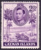 242 Cayman Tortue Turtle Tortuga Schildkrote MNH ** Neuf SC (CAY-95) - Schildpadden