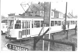 Putte - Tram Op Stabroeksesteenweg (Foto). - Putte
