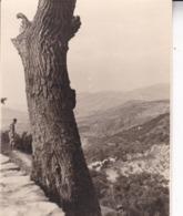 ALPUJARRA CARATAUNAS 1946 Vue D'ensemble Photo Amateur Format 7,5 X 5,5 Cm ESPAGNE CASTILLA - Lugares