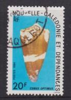 New Caledonia 1984 Sea Shells 20f Used  SG 724 - Nueva Caledonia