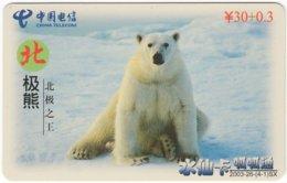 CHINA D-743 Prepaid ChinaTelecom - Animal, Polar Bear - Used - China