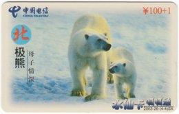 CHINA D-746 Prepaid ChinaTelecom - Animal, Polar Bear - Used - China
