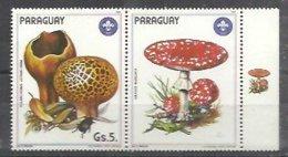 PARAGUAY 1984 - Hongos