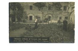 14419 - Palermo - Alcune Orfane Al Lavoro Dei Campi - Palermo