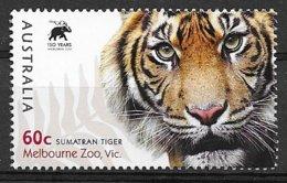 Tigre, Son Regard - Roofkatten