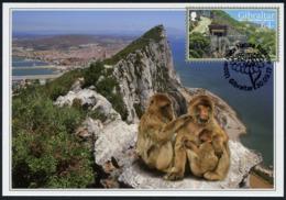 GIBRALTAR (2017). Carte Maximum Card - Apes Den, Monos, Macacos, Ape, Singe - Upper Rock Nature Reserve - Gibraltar