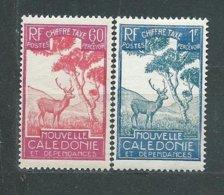 NOUVELLE-CALEDONIE TIMBRE-TAXE  N° 35/36  * TB - Portomarken