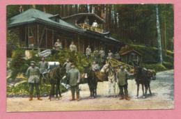 88 - VOGESEN - Das Bayernhaus In Den Franz. Vogesen - Soldats Allemands - Mulets - Anes - Esel - Feldpost - Guerre 14/18 - Frankreich