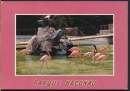 °°° 14486 - CUBA - PARQUE BACONAO - 1992 With Stamps °°° - Cuba