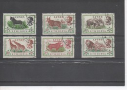 ETHIOPIE -, Faune Sauvage : Ane Sauvage, Oréas, Eléphants, Girafes, Oryx, Lion Et Lionne - Ethiopie