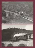170919 - 2 PHOTOS ANNEES 60/70 - TRANSPORT TRAIN CHEMIN DE FER En SUISSE - Loco 403 CFD Pont - Trains