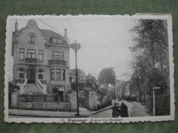 WATERMAEL - AVENUE VAN BECELAERE - België
