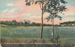AUCKLAND , New Zealand , 1914 ; Domain Cricket Ground - New Zealand