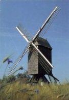 SINT-MARTENS-LATEM (O.Vl.) - Molen/moulin - Houten Standaardmolen (Koutermolen) Na Verplaatsing / Restauratie (ca. 1985) - Sint-Martens-Latem