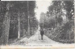 CANAPLES - Allée De L'Etroit - Etroit Alley - France
