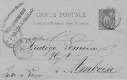 Carte Postale 1884 Oblitération Selles Sur Cher Timbre 10c Tampon Publicitaire Sur Recto DUMEZ Tous Produits Du Sol - Selles Sur Cher