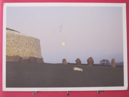 Visuel Très Peu Courant - Irlande - Meath - New Grange - The Great Circle - Scans Recto-verso - Meath