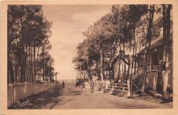 ¤¤    -  MESQUER - QUIMIAC   -  L'Avenue Principale Du Bois De Pins    -   ¤¤ - Mesquer Quimiac