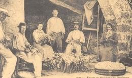 Ardèche Pittoresque - L'Elevage Du Ver à Soie - Le Décoconage Dans Une Ferme Ardéchoise - Cecodi N'1341 - France