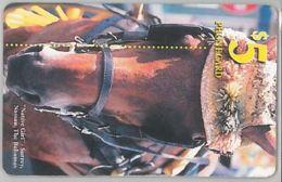 PHONE CARD-BAHAMAS (E47.25.2 - Bahama's