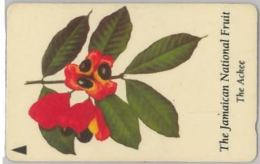 PHONE CARD-JAMAICA (E47.37.3 - Giamaica